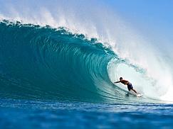 하와이 서핑투어