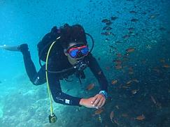 앞바다 체험다이빙